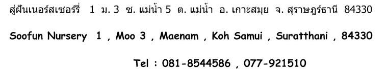 Детский сад Маенам Самуи, детский сад   Самуи, детский сад Soofun nurcery,   садик для детей самуи, ясли самуи,   детский сад в районе Maenam, maenam   nurcery, nurcery koh samui maenam